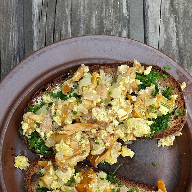 Eierschwammerleierspeis auf getoastetem Brot
